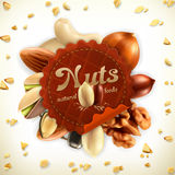 Nuts vector label. Nuts, vector label, isolated on white background Royalty Free Stock Photos