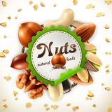 Nuts vector label. Nuts, vector label on white background Royalty Free Stock Photo