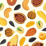 Nuts vector pattern Stock Photography