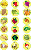 Nuts, vegetables, fruits. The illustration shows the various gifts of nature. This is several kinds of nuts, fruits and vegetables. Illustration done in cartoon Stock Images