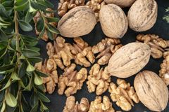 Nuts and walnut kernels on a black, dark background with green sprigs royalty free stock photos