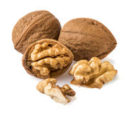 Nuts and walnut kernels. On a white background royalty free stock images