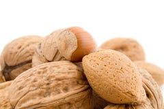 Nuts, walnuts, hazelnuts, almonds Stock Photo