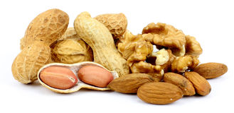 Nuts on a white background Stock Image
