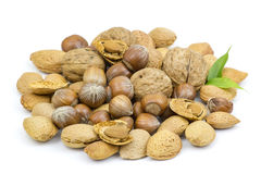 Nuts on white background Royalty Free Stock Photos