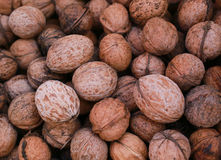 Nuts in an white bag plastic. Green grass and nuts Royalty Free Stock Image