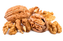 Nuts on white. Whole and shelled walnuts isolated on white background Royalty Free Stock Photos