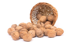 Nuts on white Royalty Free Stock Images