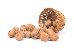 Nuts on white Royalty Free Stock Photos