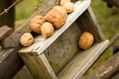 Nuts on wood box Royalty Free Stock Image
