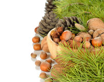 Nuts in a wooden bowl Stock Images