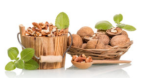 Nuts in wooden bucket Stock Images