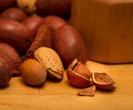 Nuts for you Stock Images