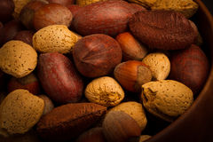 Nuts for you Royalty Free Stock Photos