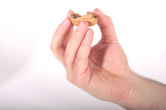 In a Nutshell #2. A hand holding the shell of a walnut Stock Images