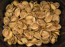 Nutshells Stock Photos