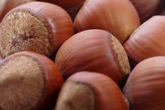 Nutss Imagen de archivo libre de regalías
