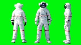 Nutteloos astronautenverblijf Het groene scherm het 3d teruggeven stock illustratie