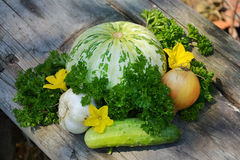Nuttige groenten dl uw ontwerp 3 Stock Afbeeldingen