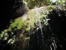 Nuture wody spadek zdjęcie royalty free