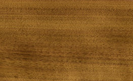 Nutwood veneer Royalty Free Stock Photo