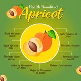 Nutzen für die Gesundheit der Aprikose Frische Frucht Gesunde Frucht zum Ohr stockbilder