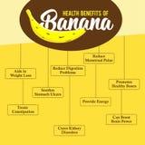Nutzen für die Gesundheit der Banane Frische Banane lizenzfreie stockfotografie