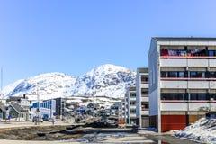 Nuuk żywe ćwiartki Fotografia Royalty Free