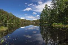 Nuuksio Nationaal Park Royalty-vrije Stock Afbeelding