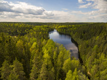 Nuuksio nature reserve Royalty Free Stock Images