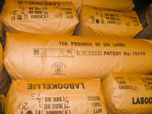 Nuvara Eliya, Sri Lanla - 2009年5月03日:袋子用茶叶在Mackwoods播种限制了PVT工厂 免版税图库摄影
