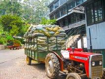 Nuvara Eliya Sri Lanla, Maj 03, -, 2009: Torby z herbacianą liść uprawą na Mackwoods Ograniczali PVT fabrykę Obrazy Royalty Free