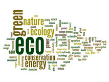 Nuvem conceptual da palavra da ecologia Foto de Stock Royalty Free