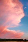 Nuvem cor-de-rosa da noite Imagens de Stock Royalty Free