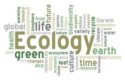 Nuvem da palavra da ecologia ilustração stock