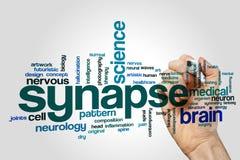 Nuvem da palavra da sinapse Foto de Stock