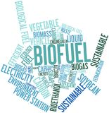 Nuvem da palavra para o combustível biológico Fotografia de Stock Royalty Free