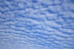 Nuvem de Altocumulus Imagens de Stock Royalty Free