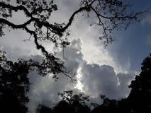 Nuvem grossa na noite imagens de stock royalty free
