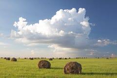 Nuvems tempestuosa sobre campos da colheita Imagens de Stock Royalty Free