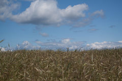 Nuvens agradáveis Fotografia de Stock Royalty Free