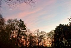 Nuvens alaranjado-cor-de-rosa vibrantes do por do sol Fotos de Stock Royalty Free