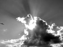 Nuvens brancas em um céu azul em uma imagem preto e branco Fotos de Stock