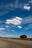 Nuvens brancas grandes Fotos de Stock Royalty Free