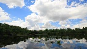 Nuvens brancas que movem-se sobre a floresta e o lago video estoque
