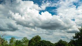 Nuvens brancas que movem sobre o céu azul sobre árvores na floresta de Tailândia filme
