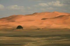 Nuvens, céu, e dunas de areia pasteis macias, borda de Sahara Desert Imagem de Stock