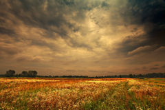 Nuvens chuvosas escuras Fotografia de Stock