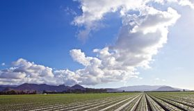 Nuvens da terra Fotos de Stock