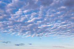 Nuvens de cirro no céu azul Fotografia de Stock Royalty Free